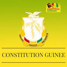 Modification constitutionnelle: Patrice Seny Camara <<accuse>> le CNT d'avoir fait un travail bâclé sur la constitution en 2010