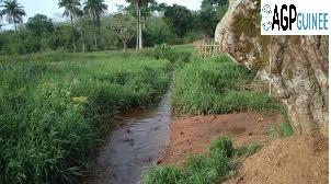 Menace de disparition de la rivière mythique ''Bembeya''à Beyla